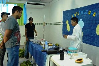 Projeto Fruticultura da turma 126