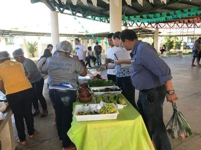 Experimento de feira livre ocorrido no Campus Amajari