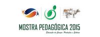 Campus Amajari realizará Mostra Pedagógica